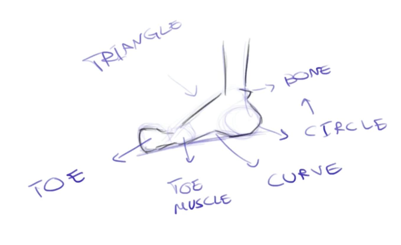 foot parts