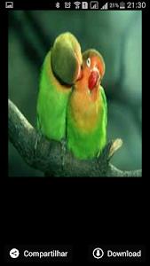 Amor Te Amo screenshot 2