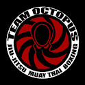 Team Octopus icon
