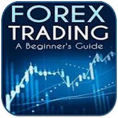 Forex Trading Beginner's Guide