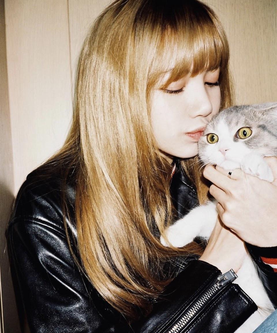 lisa cat