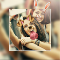 Photo Editor Collage Maker Pro: Filters & Stickers icon