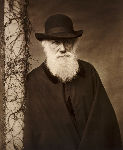 Copy of a c1880 portrait of Charles Darwin, Down House, Downe, Bromley, Greater London