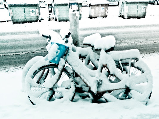 Dove sono i pneumatici da neve? di silviotta