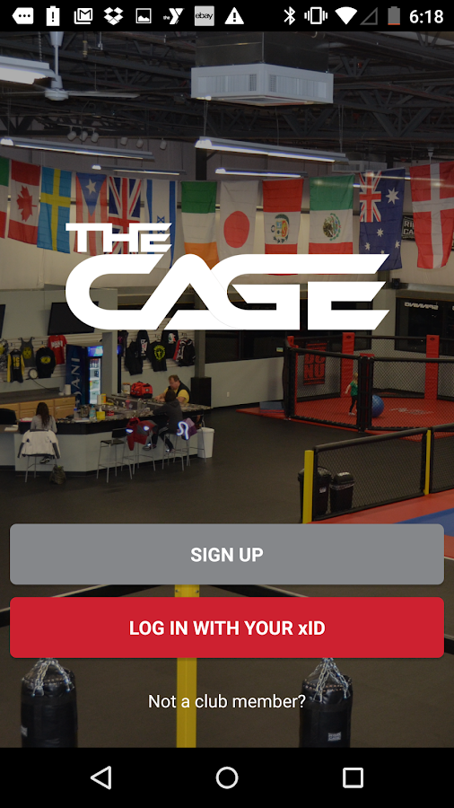 The Cage- screenshot