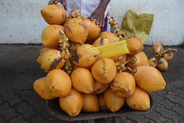 Sri Lanka.... di Nikaele