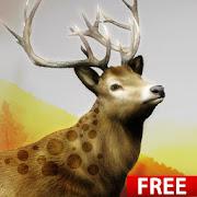Hunting Challenge