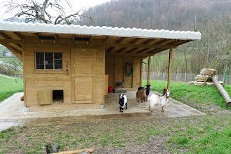 Photo: Bei diesem attraktiven Stall möchte man doch eine Ziege sein.