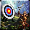 Bow And Arrows Archery 2016