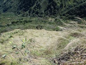 Photo: El viento azotaba los arbustos y el zacate, por no decir que a nosotros también