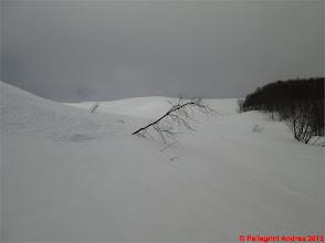 Photo: IMG_2167 devo per forza cercare neve candida da tracciare