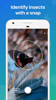screenshot of Picture Insect - Insect Id Pro