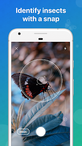 Picture Insect - Bug Identifier 1.0.12