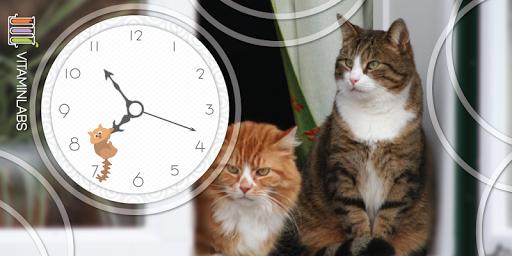 Ginger Fat Kitty Cat WatchFace