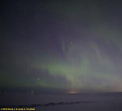 Photo: Aurora borealis, Iceland