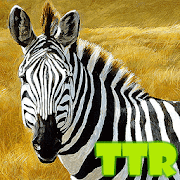 zebra live wallpapers free