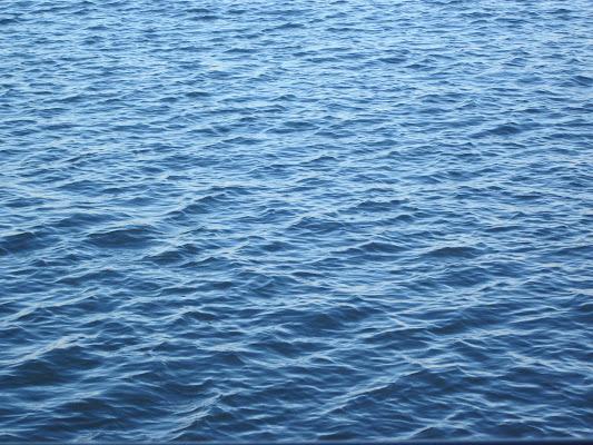L'immensità del mare di emanuela_dolci