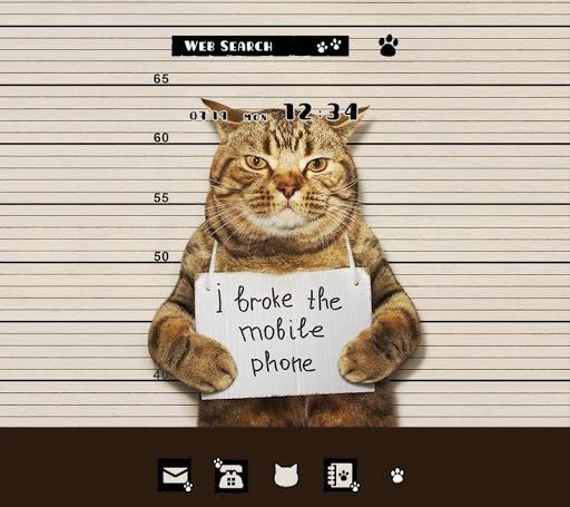 Wallpaper Cat Mug Shot Theme 1.0.0 Windows u7528 1