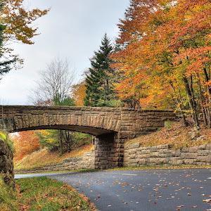 Acada NP Bridge I.jpg