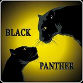 Black Panther Slot