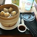 dim sum in Shanghai in Shanghai, Shanghai, China
