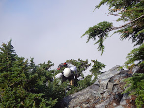 Photo: Rick comes up through the tree