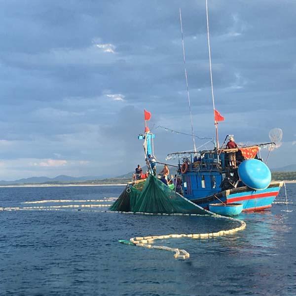 Việc đánh bắt thủy hải sản không hề dễ dàng.