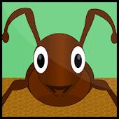 Ant Evolution