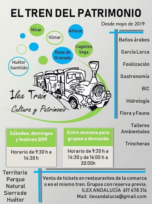TrenPatrimonioViznar2019