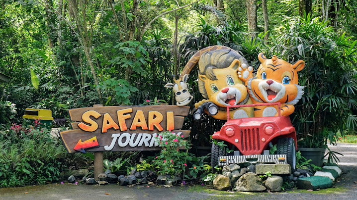 Pengalaman Berkunjung ke Taman Safari Indonesia (TSI) Cisarua Bogor