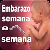 Embarazo Semana a Semana 2017