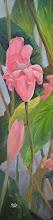 "Photo: ""Where the Wild Flowers Grow No. 1"" - Hana, Maui - 12"" x 48"" (available from artist)"