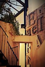 """Photo: Domingo de viajes, domingo de libros, domingo de ruta librera. Viajamos a Buenos Aires y conocemos la librería Eterna Cadencia """"casa tomada por los escritores"""" como dicen ellos mismos.  En Palermo Viejo, un barrio de sobra conocido de Buenos Aires, se alza una casona convertida en cafetería, restaurante, editorial...y librería. Pablo Braun compraría la casa en 2004, a punto de ser demolida, y en 2005 abrió sus puertas esta librería con bar. Tras pasar por una crisis y pasarse los días leyendo se le ocurrió montar su propia librería y así, el interior de la casa se convirtió en un fantástico espacio para libros mientras que el patio interior se llenaba de mesas para que los clientes pudieran tomarse algo entre sus letras favoritas. Con un lector empedernido convertido en librero, nos podemos imaginar que otro de los puntos fuertes de esta librería son las recomendaciones personalizadas y las charlas. Maderas nobles, colores cálidos, decoraciones con libros, actividades literarias... creo que si algo sobra son razones para hacer una parada en este maravilloso lugar.  Fotografías: http://www.eternacadencia.com/galeria.html"""