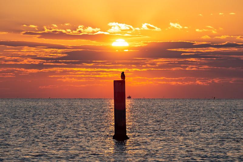 alba a mare d'estate di salvolaverde