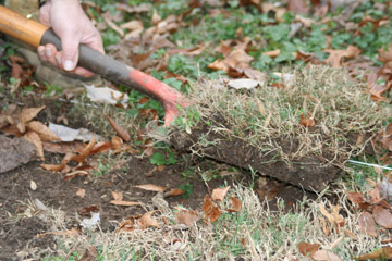 turn soil
