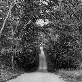 Rolling Roads by Lauren DeJarnatt Yoder - Black & White Landscapes ( b&w, road, long,  )