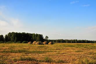 Photo: Un champ aux alentours du village