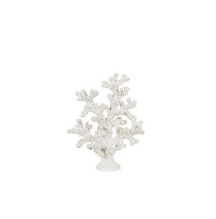 Korall Vit 8x16x20 cm