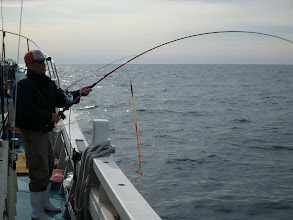 Photo: 「今度は魚だー!」