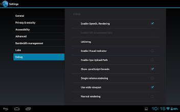 Photo: The debug menu in the browser is also enabled by default in the default browser.
