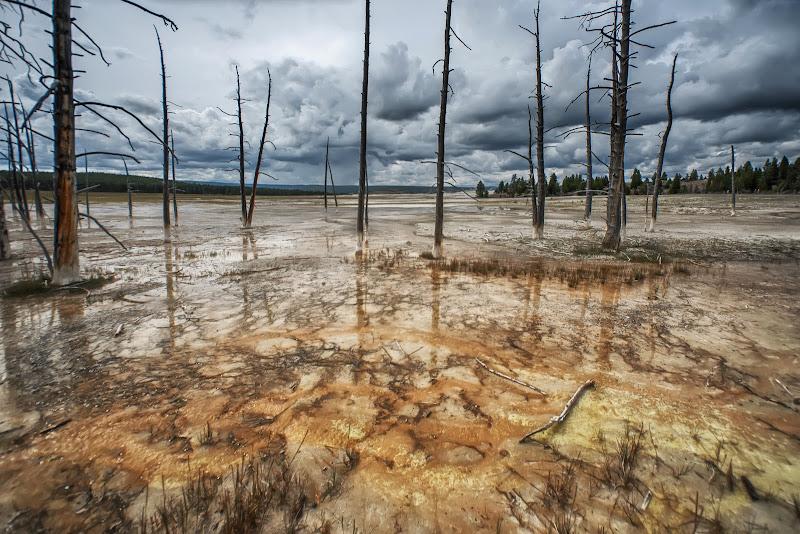 Yellowstone di Patrix