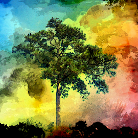 Tree With Color by Edward Gold - Digital Art Things ( digital photography, green leaves, blue clouds, tree, pink clouds, red clouds, artistic object, colorful, orange clouds, digital art,  )