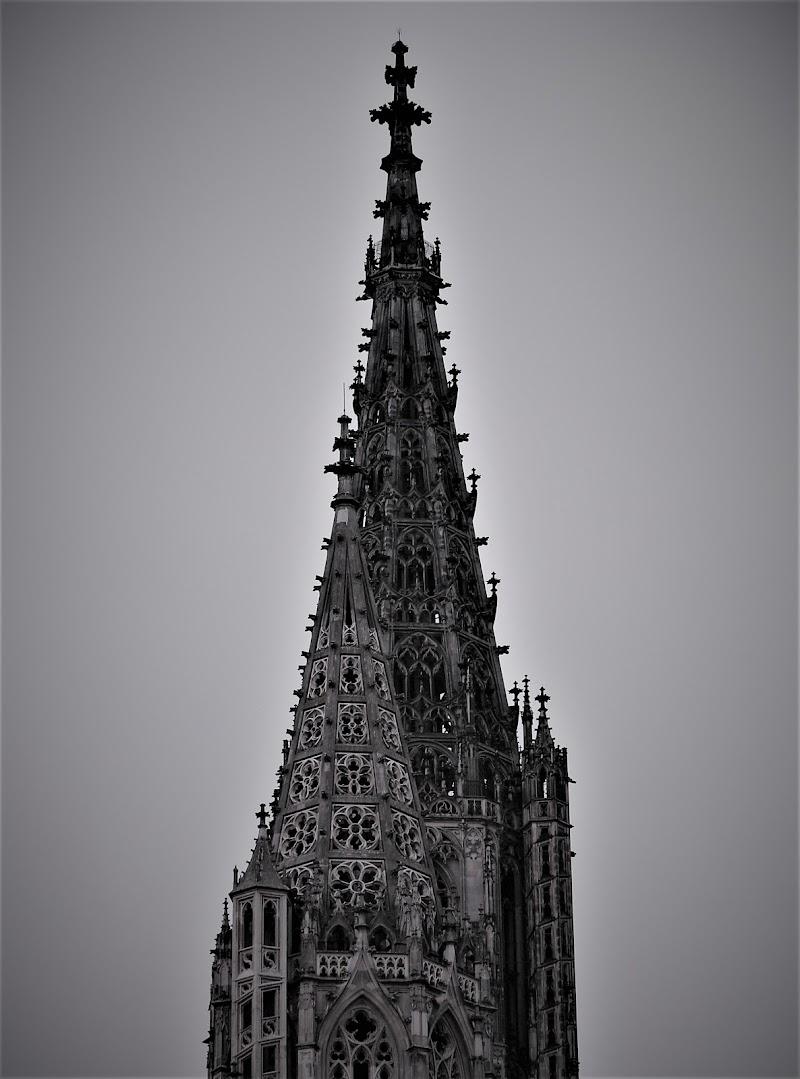 gothic cathedral di aritex