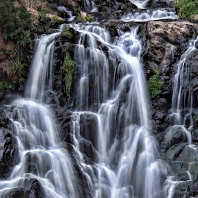 Cascading waterfall by Philip McKibbin - Nature Up Close Water ( water, stream, pool, cascade, drop, waterfall, fall, ripple, wet, rocks, river )