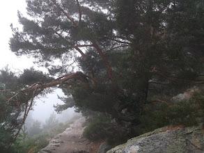 Photo: En el camino