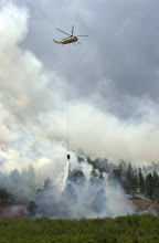 Photo: Hayman Fire North. Division O.  Helicopter drops water on hot spot to keep fire on West side of S. Platte River