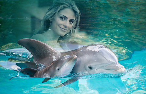 Dolphin Photo Frames - náhled