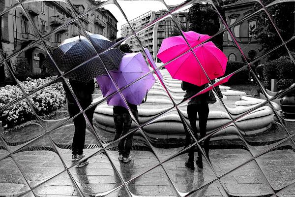 Sotto la pioggia. di Naldina Fornasari