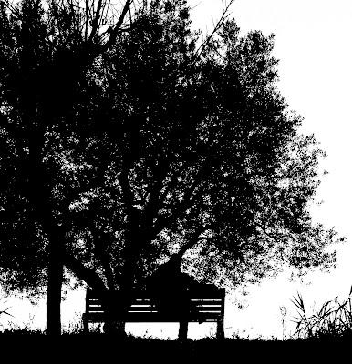 Momenti di riflessione........ di DanteS