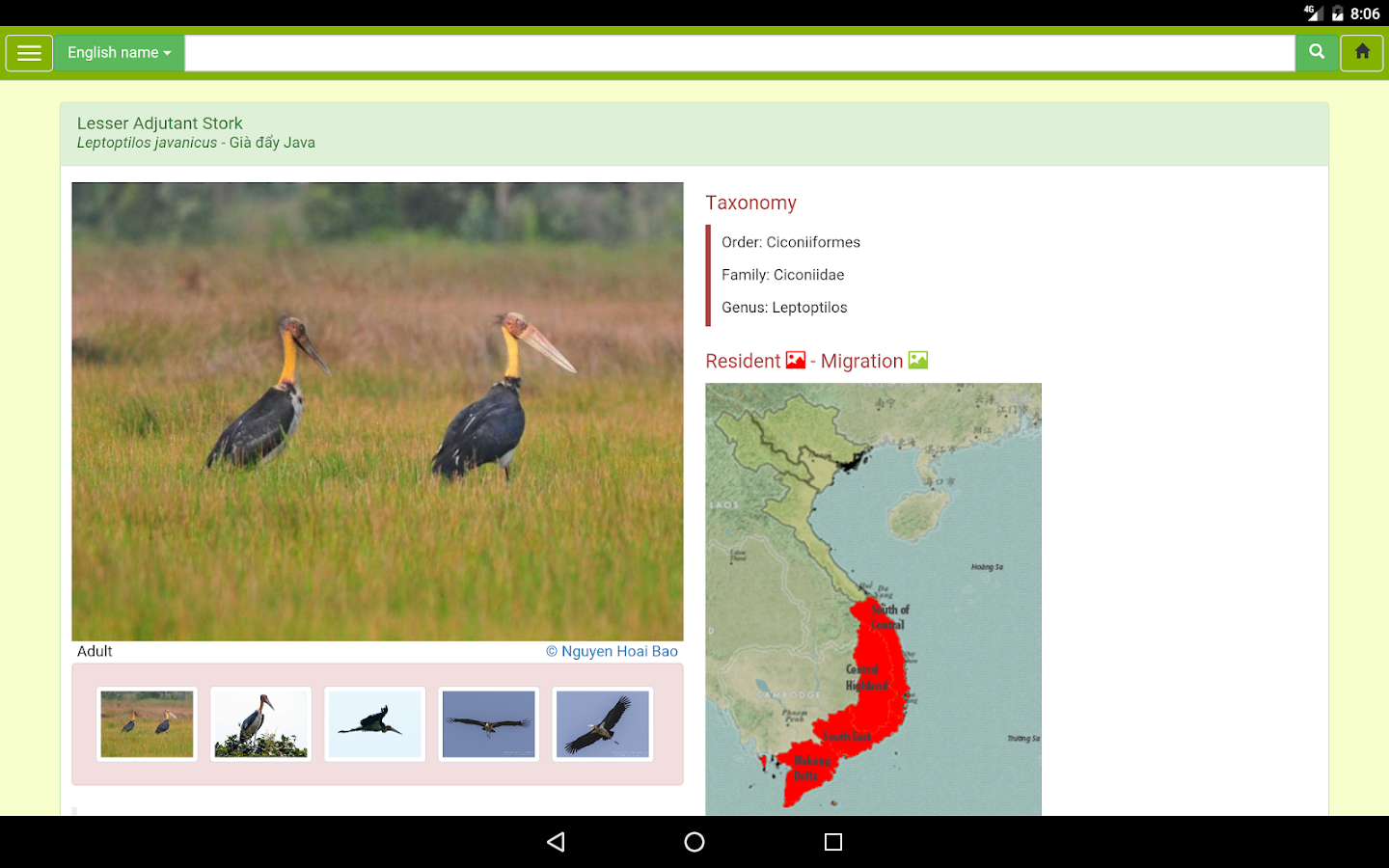 vietnam bird guide android apps on google play